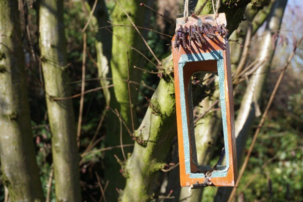 Diy Vogelfutterhaus Upcycling Reges Leben